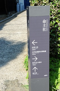 DSC_8981.jpg
