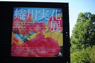 DSC_2781.jpg