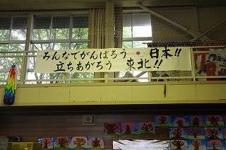 DSC_5348.jpg
