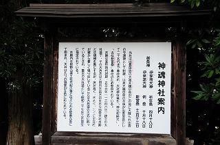 DSC_9310.jpg