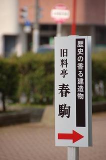 harukoma5.jpg