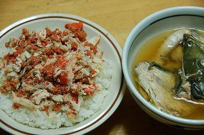 kaikoudon1.jpg