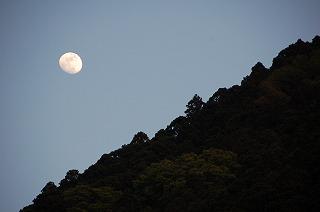 sunset4294.jpg