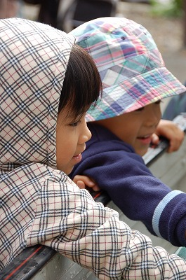 takasima-f8.jpg