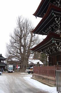 takayama05.jpg