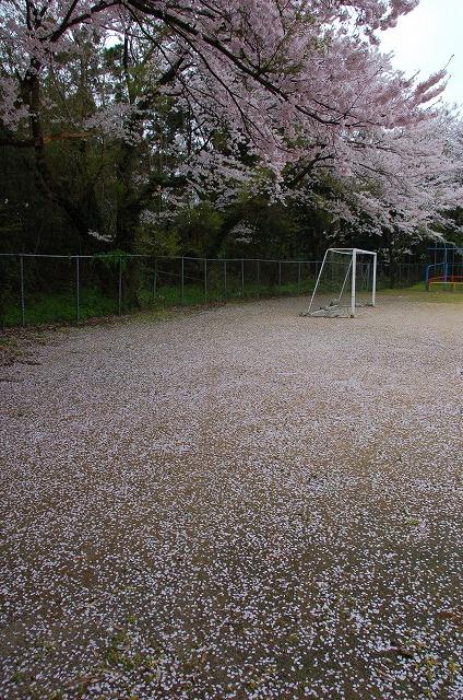 yoshizaki01.jpg
