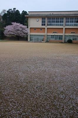 yosizaki04.jpg